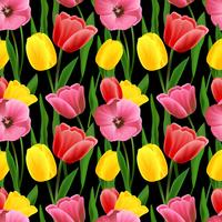 Tulip sem costura de fundo vetor