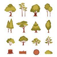 Conjunto de elementos de floresta vetor