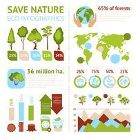Conjunto de infográficos floresta vetor