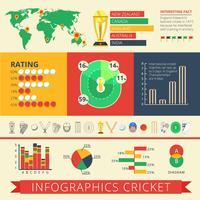 Cartaz de críquete de relatório de infografia vetor