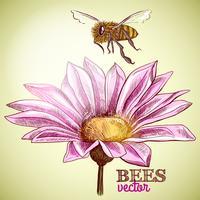 Voando de abelha e flores desabrochando fundo
