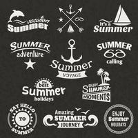 Rótulo de elemento de verão vetor