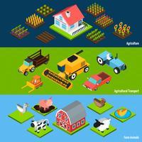 Conjunto de bandeiras isométrica horizontal de fazenda vetor