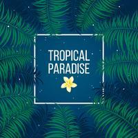 Modelo de plano de fundo do paraíso tropical noite estrelada