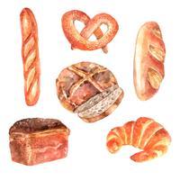 Conjunto de ícones em aquarela de pão fresco vetor