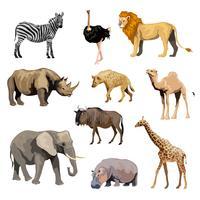 Conjunto de animais selvagens da Africa vetor