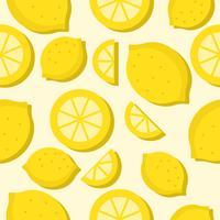 Fruta tropical de limão sem costura vetor