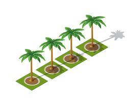 Conjunto de palm 3D isométrica vetor