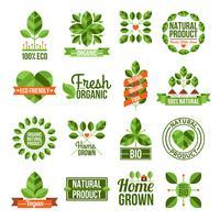 Conjunto de rótulos orgânicos e naturais vetor