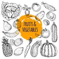 Doodle de mão desenhada de coleção de comida saudável vetor