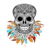 Crânio tribal com penas vetor