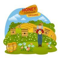 Ilustração do conceito de mel vetor