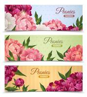Conjunto de Banners de flores