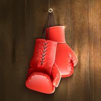 Luvas De Boxe Na Parede vetor