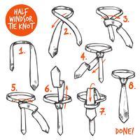 Esboço de nó de gravata vetor