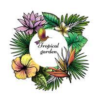 Design De Moldura Tropical vetor