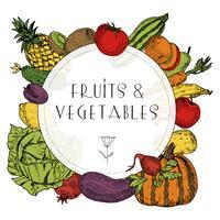 Quadro de legumes frutas alimentos saudáveis vetor