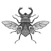 Esboço Decorativo Bug vetor