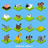 Conjunto de animais isométricos vetor