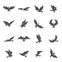 Conjunto de ícones de águia vetor