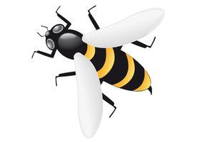 abelha vetor