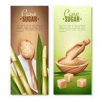 conjunto de bandeiras de cana de açúcar vetor