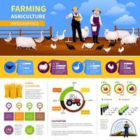 Infografia plana de agricultura vetor