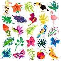 Flora e fauna de Troipcal