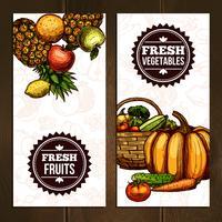 Banners verticais de frutas e legumes vetor