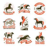 Conjunto de emblemas de rótulos de criação de cavalos