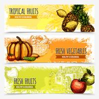 Banners horizontais de frutas e legumes vetor