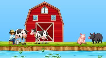 Um, agricultor, vaca ordenhando, em, fazenda vetor