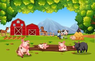 Animal fazenda, em, terra cultivada vetor