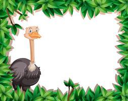 Um, avestruz, ligado, natureza, armação vetor