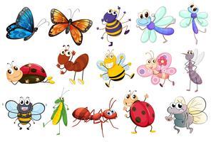 Conjunto de insetos diferentes