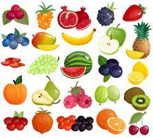 Coleção de ícones coloridos de frutas bagas