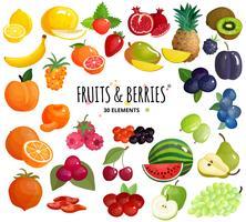 Fundo do fundo da composição das bagas dos frutos vetor