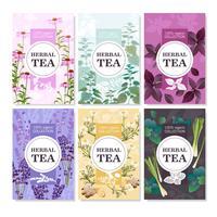 Conjunto de Banners coloridos de chá de ervas vetor