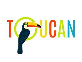 Banner de design de placa de identificação decorativa plana de Tucano vetor