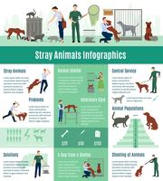 Conjunto de infográficos de animais vadios vetor