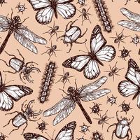 Padrão sem emenda de inseto desenhado vintage vetor