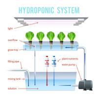 Infográfico colorido de hidroponia