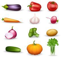 Ícones coloridos de comida de saúde vegetal