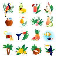 Conjunto de ícones tropicais vetor