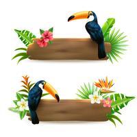 Toucan 2 Banners de Floresta Tropical vetor