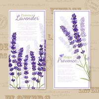 Banners verticais de flores de lavanda