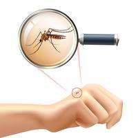 Mosquito na mão vetor