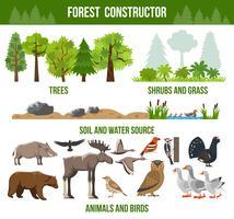 Cartaz do construtor da floresta