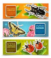 Conjunto de Banners de insetos