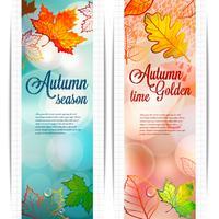Fundo abstrato das folhas de outono no fundo borrado com elementos do bokeh. vetor